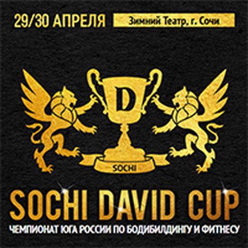 Положение: «Sochi David Cup»-2017
