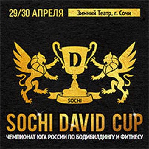 Протоколы: «Sochi David Cup» - 2017