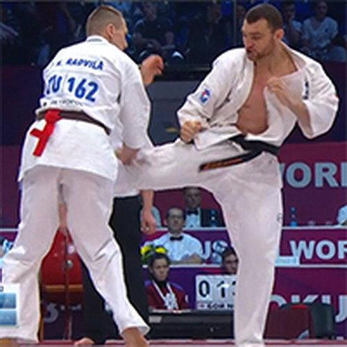 Видео: Чемпионат мира по Киокусинкай KWU - 2017