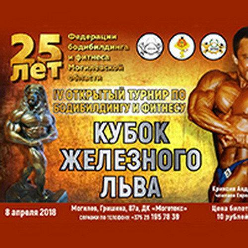 Кубок железного льва - 2018